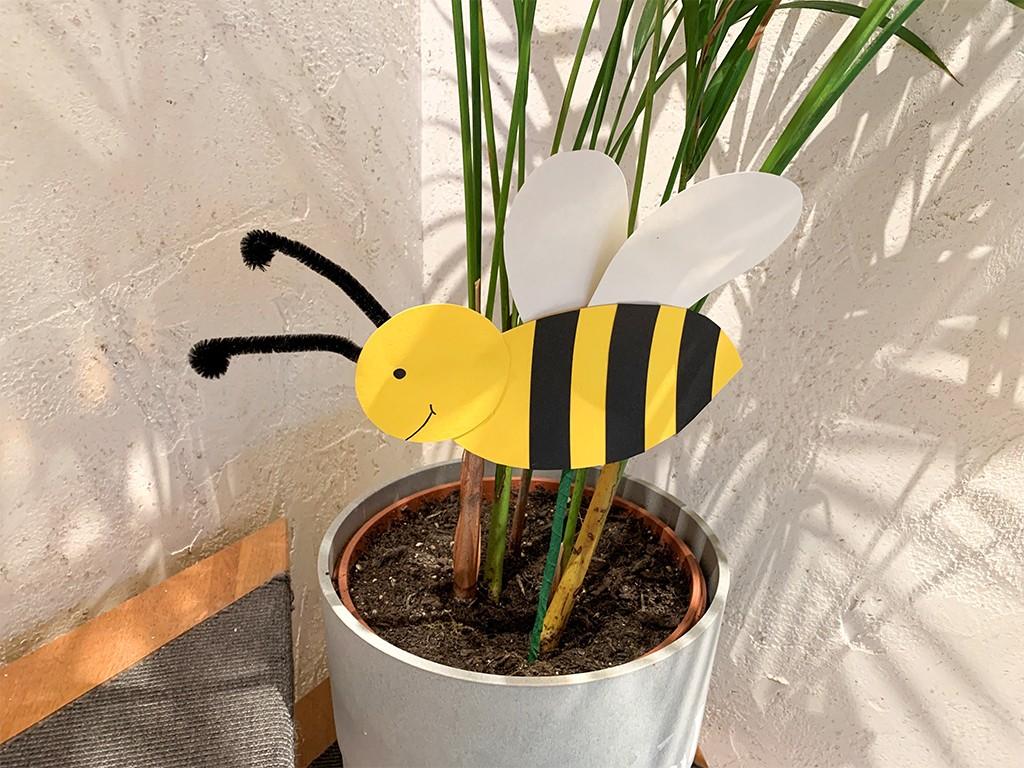 Biene an einem Stecker in einem Pflanzenkübel